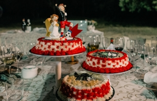 06 - Fotografo-de-bodas-pago-del-vicario (21)
